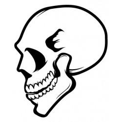 Sticker Skull 1