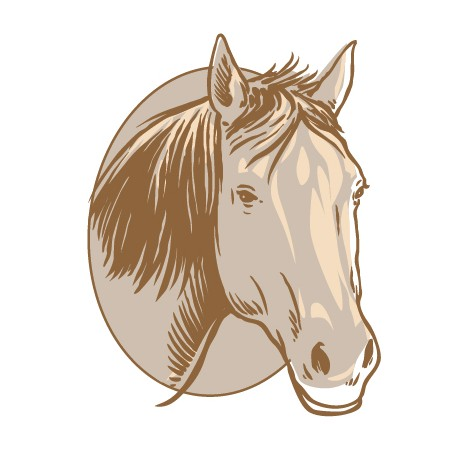 Sticker Cheval Buste