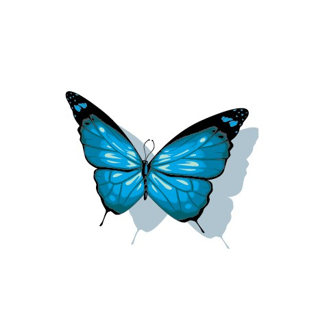 Sticker Papillon Bleu