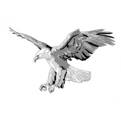 Sticker Aigle 4 Gris