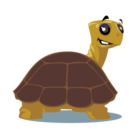 Sticker Tortue de dos
