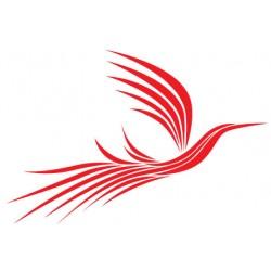 Sticker Oiseau magique Rouge